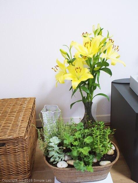 黄色 花 花瓶 D-BROS フラワーベース インテリア